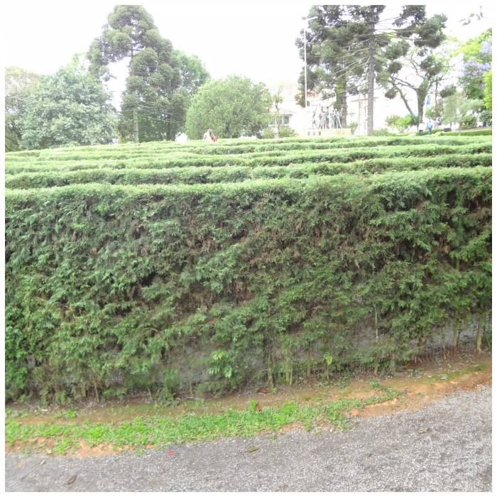 My second or third maze - that goes for lovely Kezzie!