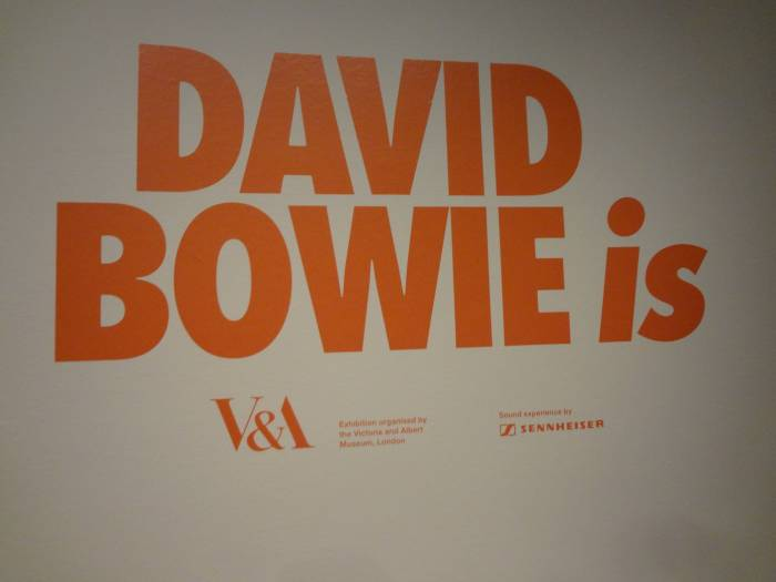 David Bowie is exhibition January 2016